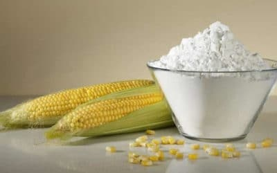 Maize(Corn) Starch Powder